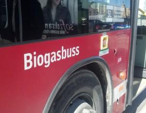Redan idag är det svårt att få fram biogas till alla biogasbussar – men av miljköskäl kan det bli ännu svårare.