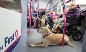 Brittiska bussjätten First ska utbilda 17 000 bussförare i service för synskdade. Foto: First Group.