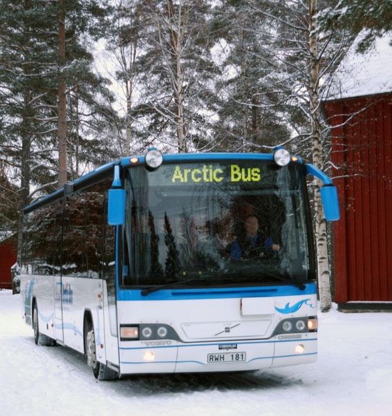 Arctic-Bus