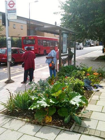 En ny rörelse har växt fram i London: Den ätbara busshållplatsen. Foto: The Edible Bus Stop.
