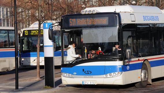 Biogasbussar i Västerås. Foto: Ulo Maasing.