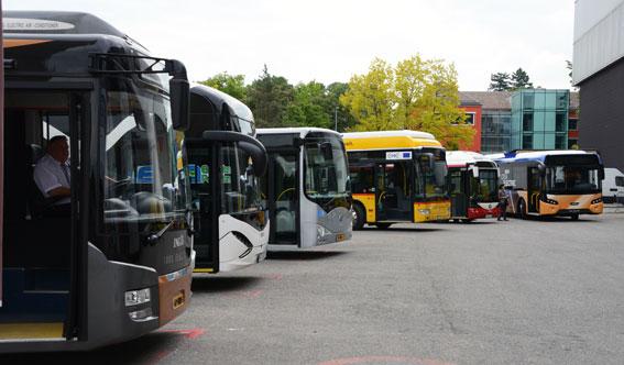 Elbussar på parad. Nu har frågan om elbussar eller spårväg lett till att ett nytt politiskt parti har bildats. Foto: Ulo Maasing.