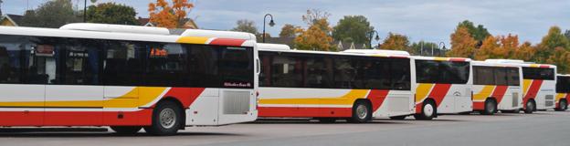 Långt till bussen på landsbygden i Jönköpings län? Enhetliga regler för närtrafik har lyft resandet. Foto: Ulo Maasing.