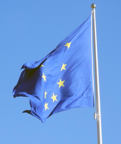 EU-kommissionens ingripande mot Tyskland applåderas av den internationella transportbranschen. Foto: Ulo Maasing.