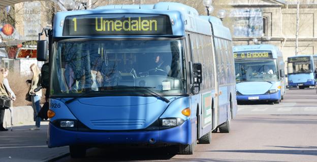 Umeborna har tagit bussen som aldrig förr i sommar. Foto: Ulo Maasing.
