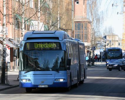 Fria resor under 30 dagar gav många blodad tand i Umeå. Foto: Ulo Maasing.