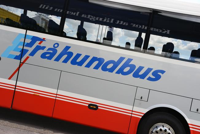 Danska Gråhundbus har halverat sin trafik över Öresund, men det beror inte på ID-kontrollerna. Foto: Ulo Maasing.