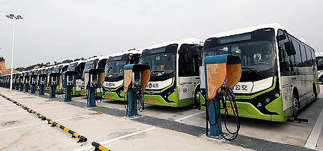 BYD K7 batteribussar på rad för laddning. Foto: BYD.