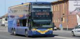 Bussresandet i Västerbotten ökar. Foto: Ulo Maasing.