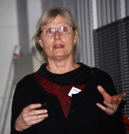 Anna Anund, docent och fortkningsledare vid VTI i Linköping. Foto: Ulo Maasing.
