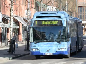 Umeå höjer biljettpriserna, men bara lite. Foto: Uloi Maasing.