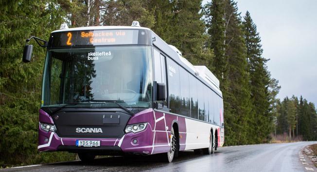 Skellefteå Buss hade en stark utveckling under 2016. Foto: Skellefteå Buss.