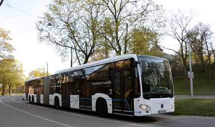 Sveriges Bussföretag och Svensk Kollektivtrafik har vänt sig till Transportstyrelsen för att 21-meters enkelledade bussar ska tillåtas i Sverige.