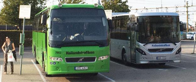 Reklamfria Hallandsbussar. Från 1 september ska inga bussar som kör åt Hallandstrafiken ha reklam. Foto: Ulo Maasing.