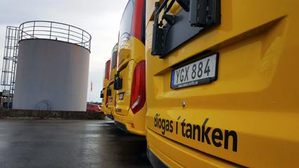 95 av Scaniabussarna är biogasbussar. Foto: Scania.
