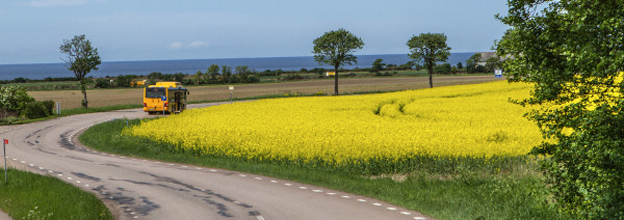 Lyckad landsbygdstrafik ställer krav på de ansvariga. Bild: VTI.