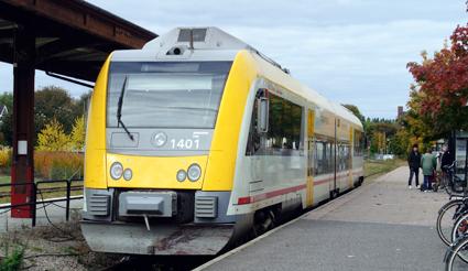 En gökunge? Dagens ensidiga spårsatsningar är varken välgrundade eller kostnadseffektiva utan handlar mer om symbolpolitik och dogmatik, anser Sveriges Bussföretag. Foto: Ulo Maasing.